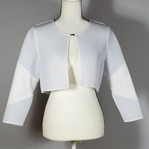 HIGH FASHION Soft Netted Cropped Jacket S/P
